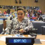 """""""هبة هجرس"""" مصر قدمت نموذجا عربيا رائدا فى دعم الاشخاص ذوى الاعاقة لمواجهة ازمة كورونا"""